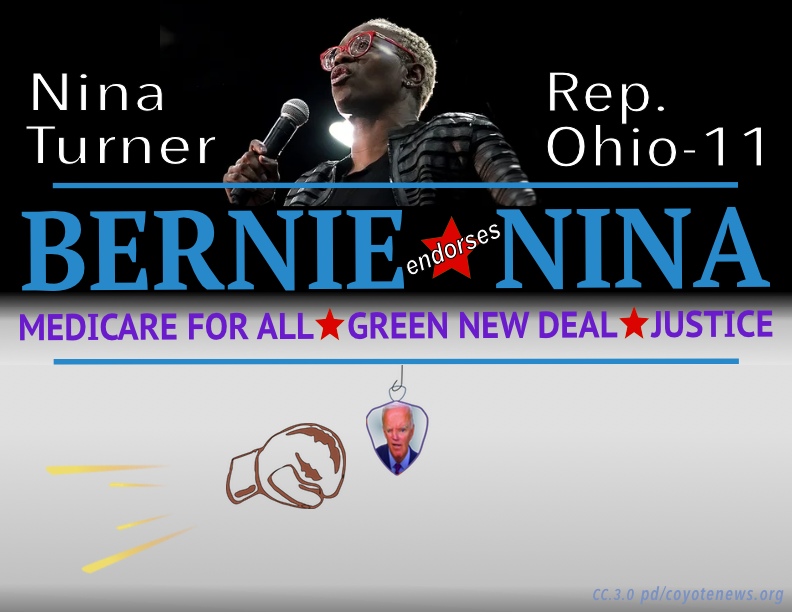 Nina Turner for Congress - original Bernie-Nina graphic intended for Bernie and Nina as President and VP respectively.